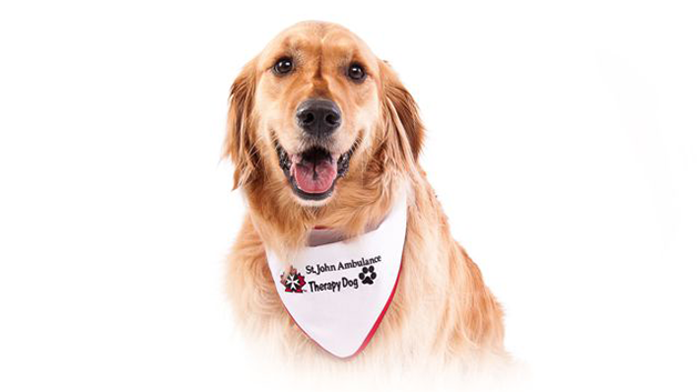 TherapyDogs_630px